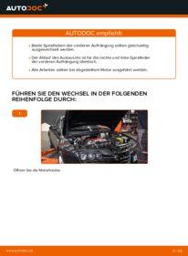 Wie der Wechsel durchführt wird: Federn Alfa Romeo 159 Sportwagon 1.9 JTDM 16V 2.4 JTDM 2.0 JTDM tauschen