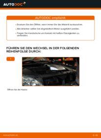 Wie der Wechsel durchführt wird: Ölfilter Lexus RX XU30 3.3 400h AWD 3.0 3.3 400h tauschen