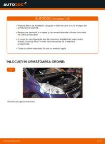 Cum să efectuați înlocuirea: Filtru habitaclu la 1.4 HDi Peugeot 208 1