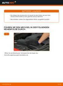 Wie der Wechsel durchführt wird: Bremssattel Ford Mondeo bwy 2.0 16V 2.0 TDCi 2.0 16V TDDi / TDCi tauschen
