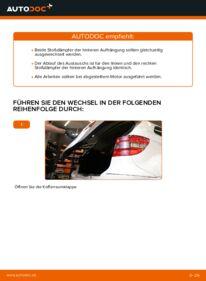 Wie der Wechsel durchführt wird: Stoßdämpfer Mercedes W245 B 180 CDI 2.0 (245.207) B 200 CDI 2.0 (245.208) B 170 1.7 (245.232) tauschen
