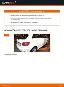 Så byter du Hjullager på B 180 CDI 2.0 (245.207) Mercedes W245