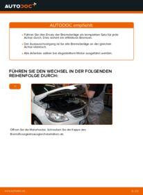 Wie der Wechsel durchführt wird: Bremsbeläge Mercedes W245 B 180 CDI 2.0 (245.207) B 200 CDI 2.0 (245.208) B 170 1.7 (245.232) tauschen