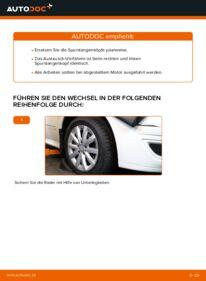 Wie der Wechsel durchführt wird: Spurstangenkopf Mercedes W245 B 180 CDI 2.0 (245.207) B 200 CDI 2.0 (245.208) B 170 1.7 (245.232) tauschen