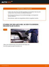 Wie der Wechsel durchführt wird: Bremsbeläge Mercedes W202 C 180 1.8 (202.018) C 250 2.5 Turbo Diesel (202.128) C 220 D 2.2 (202.121) tauschen