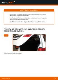 Wie der Wechsel durchführt wird: Heckklappendämpfer Mercedes W245 B 180 CDI 2.0 (245.207) B 200 CDI 2.0 (245.208) B 170 1.7 (245.232) tauschen