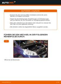 Wie der Wechsel durchführt wird: Innenraumfilter Peugeot 208 1 1.4 HDi 1.2 1.6 HDi tauschen