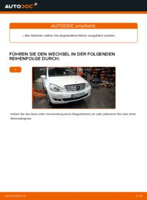 Wie der Wechsel durchführt wird: Keilrippenriemen Mercedes W245 B 180 CDI 2.0 (245.207) B 200 CDI 2.0 (245.208) B 170 1.7 (245.232) tauschen