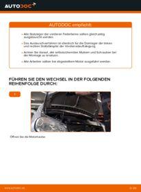 Wie der Wechsel durchführt wird: Domlager Mercedes W168 A 140 1.4 (168.031, 168.131) A 170 CDI 1.7 (168.009, 168.109) A 160 1.6 (168.033, 168.133) tauschen