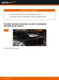 Wie der Wechsel durchführt wird: Zündkerzen Lexus RX XU30 3.3 400h AWD 3.0 3.3 400h tauschen