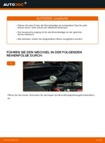 Wie der Wechsel durchführt wird: Bremsbeläge Ford Fiesta V jh jd 1.4 TDCi 1.4 16V 1.3 tauschen