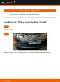 Jak provést výměnu: Klinovy zebrovany remen na 1.4 TDCi Ford Fiesta V jh jd