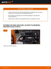 Wie der Wechsel durchführt wird: Bremsbeläge Skoda Fabia 6y5 1.4 16V 1.9 TDI 1.2 tauschen