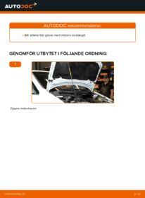 Så byter du Multirem på 2.0 DTI 16V (F75) Opel Zafira f75