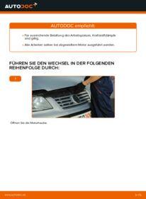 Wie der Wechsel durchführt wird: Kraftstofffilter VW Sharan 1 1.9 TDI 2.0 TDI 1.8 T 20V tauschen