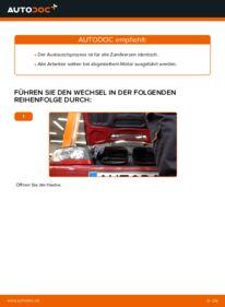 Wie der Wechsel durchführt wird: Zündkerzen BMW e46 Cabrio 330Ci 3.0 320Ci 2.2 325Ci 2.5 tauschen