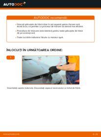 Cum să efectuați înlocuirea: Placute Frana la 1.9 dCi Renault Scenic 2