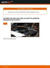 Wie der Austausch bewerkstelligt wird: Keilrippenriemen beim 523i 2.5 BMW E39