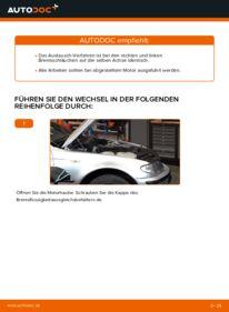 Wie der Wechsel durchführt wird: Bremsschläuche BMW 3 Touring (E46) 320d 2.0 320i 2.2 330d 2.9 tauschen