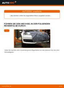 Wie der Wechsel durchführt wird: Keilrippenriemen Audi A3 8p1 2.0 TDI 16V 1.9 TDI 1.6 tauschen