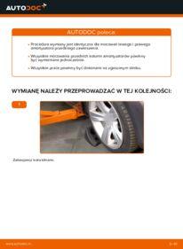 Jak przeprowadzić wymianę: Poduszka Amortyzatora w 2.0 16V Ford Mondeo bwy