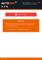 Bedienungsanleitung für Skoda Octavia 1z3 online