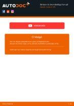 bak och fram Bromsbelägg SKODA 110 | PDF instruktioner för utbyte