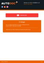 CS Germany 875430 för SUZUKI | PDF instruktioner för utbyte