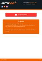 FORD vartotojo instrukcija internetinės