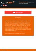 MAHLE ORIGINAL 78110611 für 206 CC (2D) | PDF Handbuch zum Wechsel