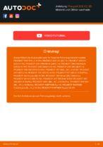 RIDEX 7O0005 für 206 CC (2D) | PDF Anleitung zum Wechsel