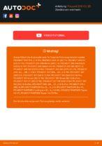 Austauschen von Bremssattel Reparatursatz PEUGEOT 206: PDF kostenlos