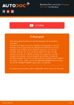 Guide PDF downloaden