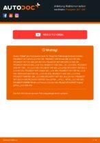 PEUGEOT Betriebsanleitung online