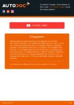 Remplacement Filtre à Huile FIAT DOBLO : instructions pdf