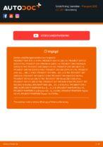Udskiftning af Tændrør: pdf vejledning til PEUGEOT 206