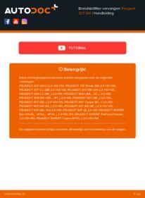 Vervanging uitvoeren: Brandstoffilter PEUGEOT 307