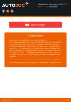 SogefiPro FA8401A per Doblo Cargo (223_) | PDF istruzioni di sostituzione