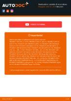 Cambio Candele di accensione istruzioni pdf per PEUGEOT 206