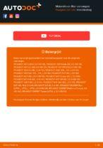 RIDEX 7O0012 voor 307 SW (3H) | PDF handleiding voor vervanging