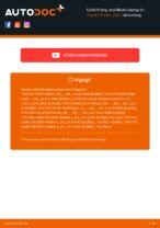Udskiftning af Stabilisatorbolt bag højre TOYOTA gør det selv - online manualer pdf