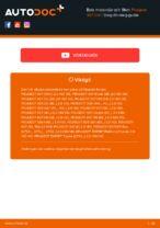DT 2.32170 för 307 SW (3H) | PDF instruktioner för utbyte