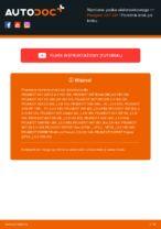 Kiedy wymienić Pas wielorowkowy PEUGEOT 307 SW (3H): pdf poradnik