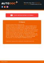 Wymiana Filtr olejowy PEUGEOT 206: online przewodnik