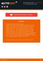 RIDEX 7O0005 dla 307 SW (3H) | PDF przewodnik wymiany