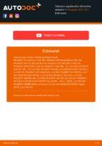 PDF Manuál pre opravu náhradné diely: 307 SW (3H)