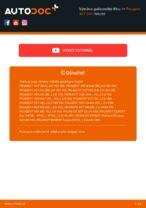 Uživatelská příručka PEUGEOT online