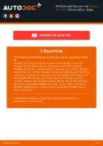 Πότε πρέπει να αλλάξει Ιμάντας poly-V PEUGEOT 307 SW (3H): εγχειριδιο pdf