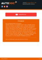 Millal vahetada Õlifilter PEUGEOT 206 CC (2D): käsiraamat pdf