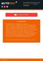 Instruções gratuitas online sobre como substituir Filtro de Óleo PEUGEOT 206 CC (2D)